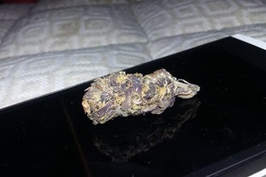Purple Rain Marijuana Strain image