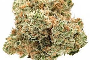 Sapphire Og Marijuana Strain image