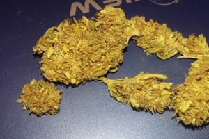 Sour Tangie Marijuana Strain image