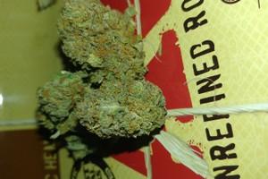 Sweet Tooth Marijuana Strain image