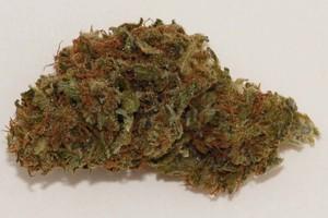 Valentine X Marijuana Strain image