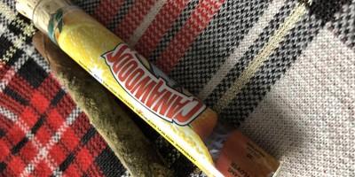 Cannawoods Novelty Blunt - Clementine 2 g Flower - 0.25 g Shatter - 0.25 Kief Blunt