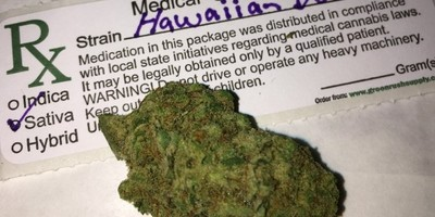 Dutch Hawaiian