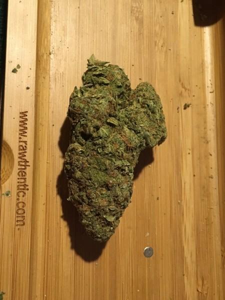 East Orange Focus >> Blueberry Muffin   Marijuana Strain Reviews   AllBud