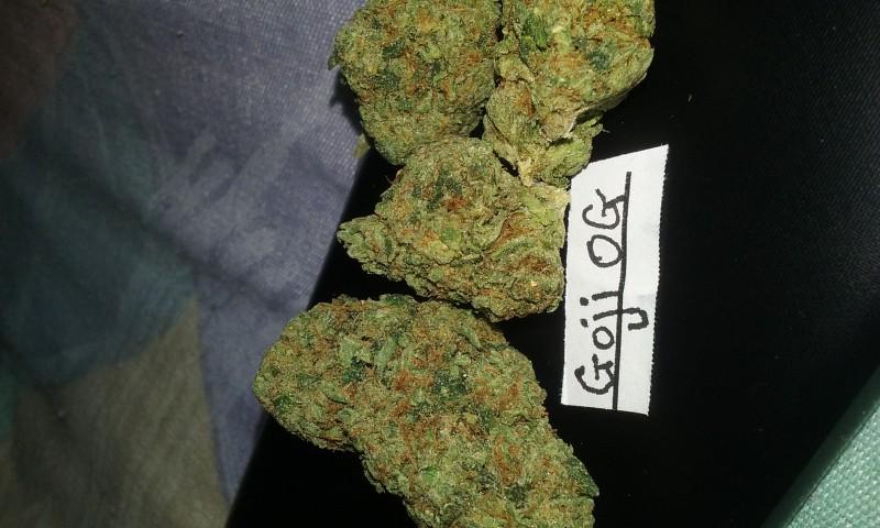 Goji OG - Marijuana Strain Reviews - AllBud